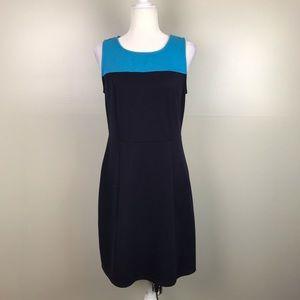 41 HAWTHORN Knit Sleeveless 2 Tone Shift Dress